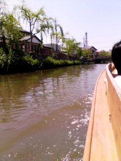 川から見える町並みと柳