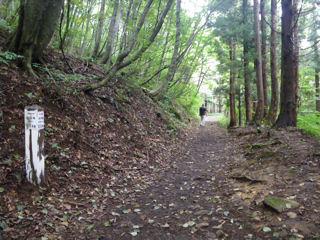 歩きやすい平坦な道