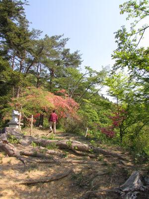 官舎山遊歩道